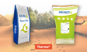 Thermo products : thermoplus and delta thermo plus